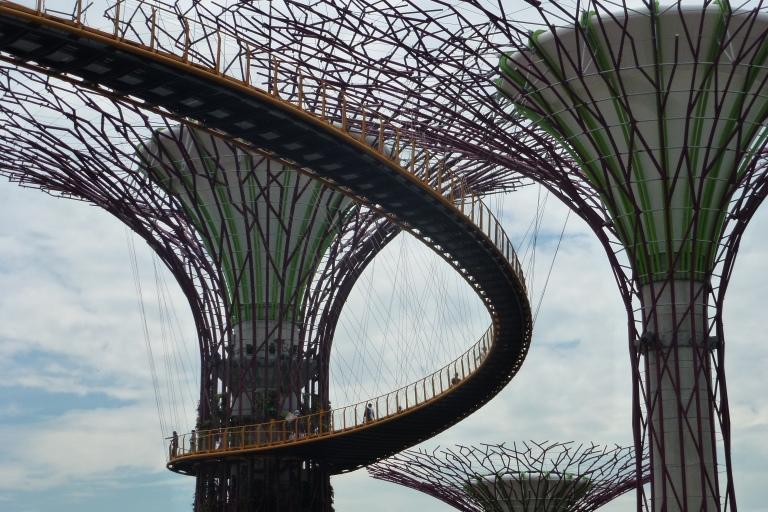 The SkyBridge with the SuperTrees