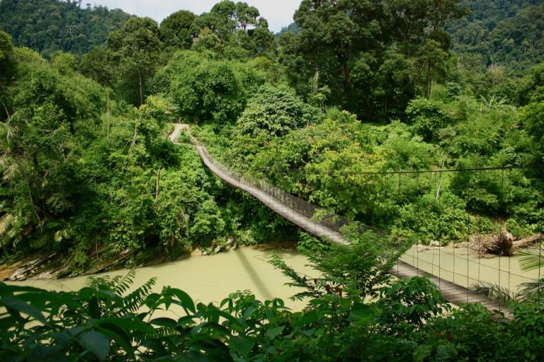 Heading into Orang-utan country...