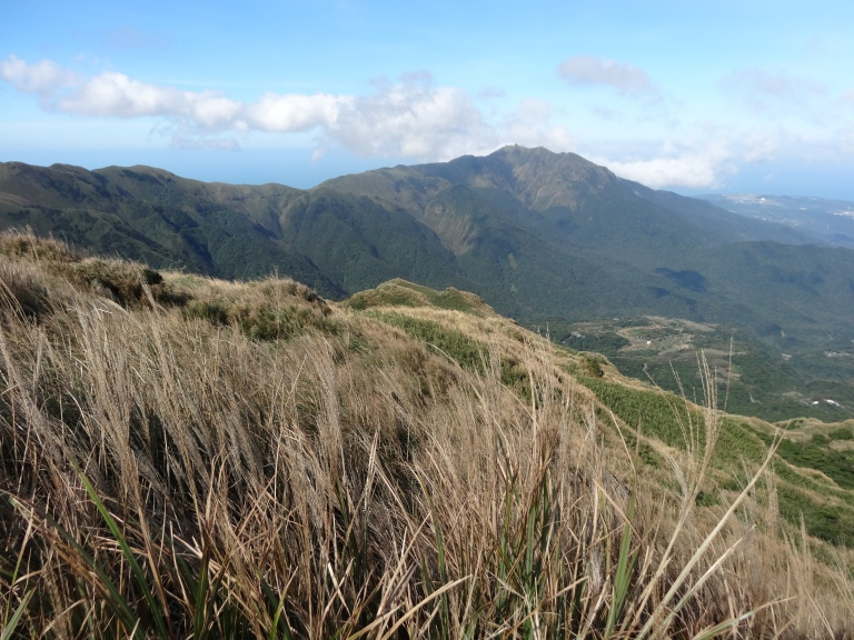 YangMingShan is an incredible place