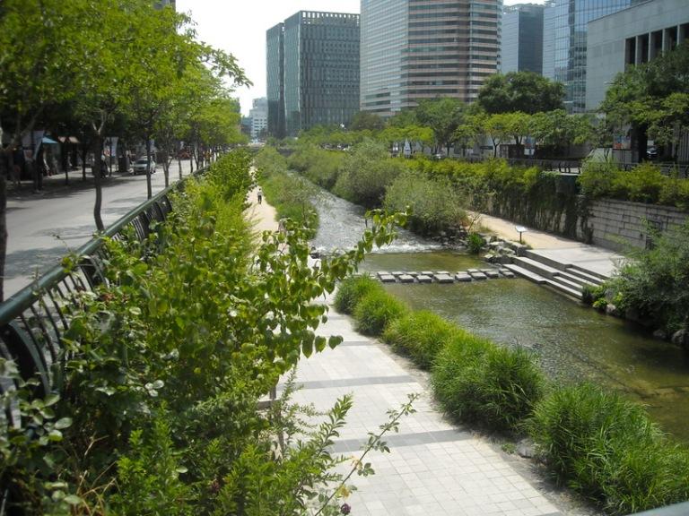 Lovely greenery at the Cheonggyecheon Stream