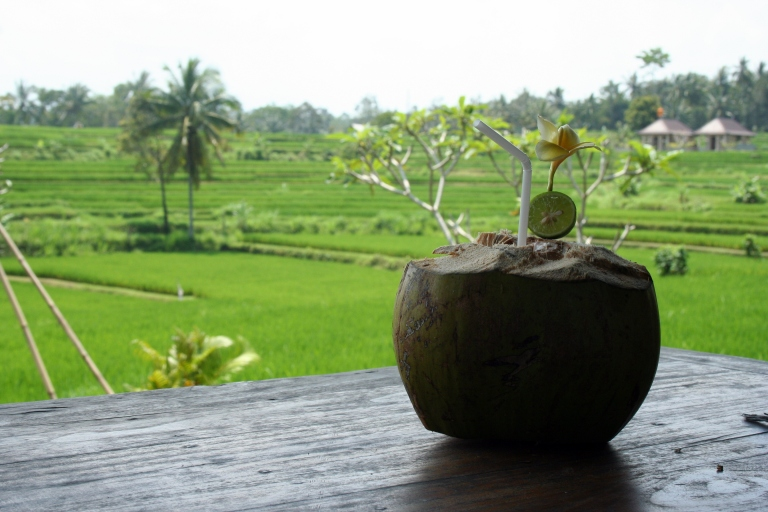 indococonut