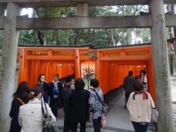 Choose your path at Fushimi Inari