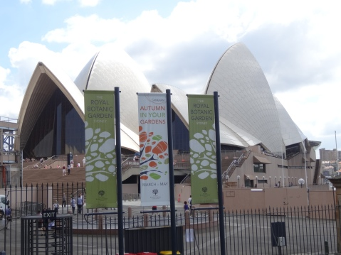 The Botanic Gardens are in the shadow of the Opera House