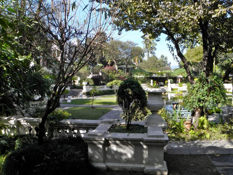 gardendreams2