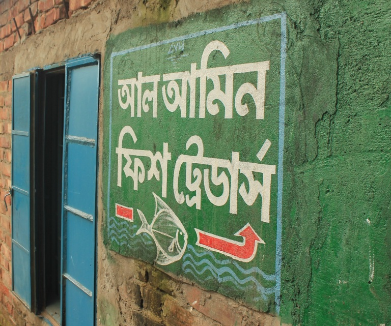 Maybe learn some Bengali during your trip?