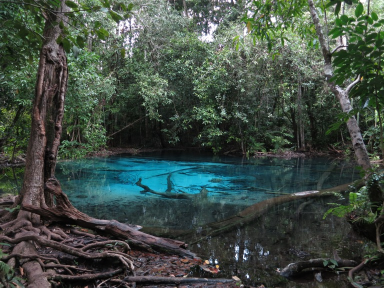 The Blue Lagoon is dark and mysterious