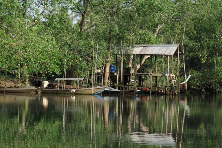 Some boats ready to navigate the mangroves...