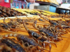 Scorpions on Sticks at Wangfujing