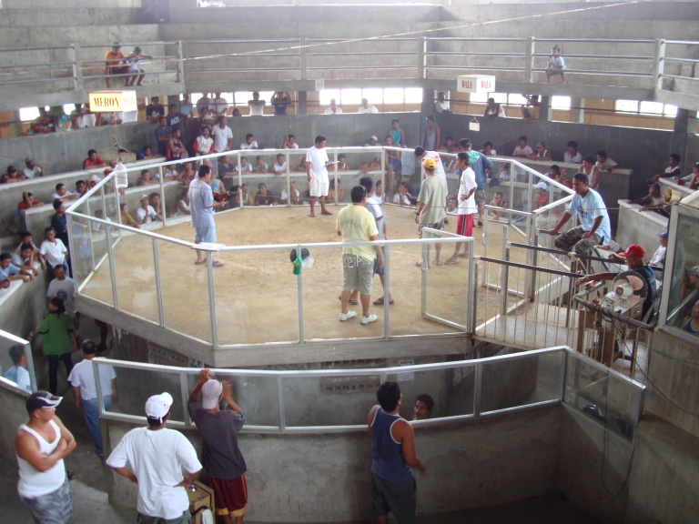 A cockfighting arena in the Philippines