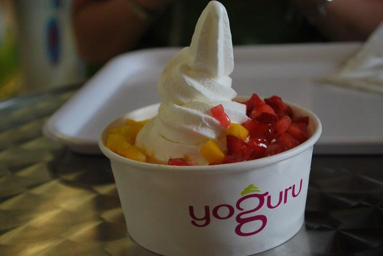 yoguru4