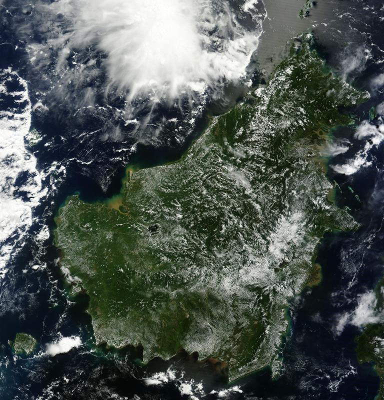 Borneo Island: An Idiot's Guide To Surviving Borneo