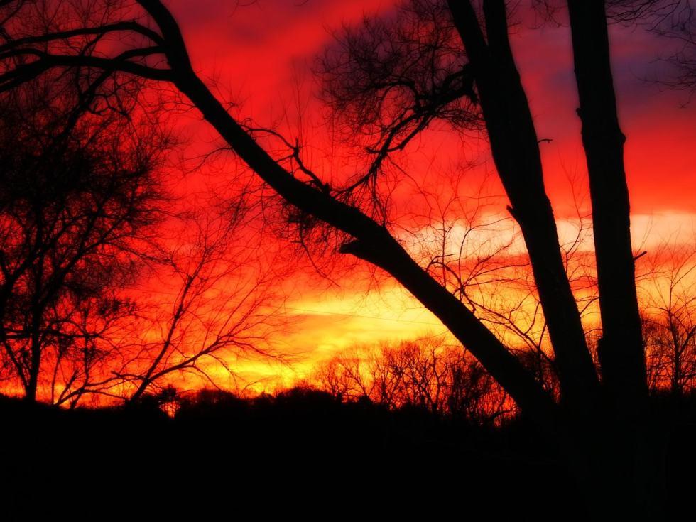 sunsetborneo