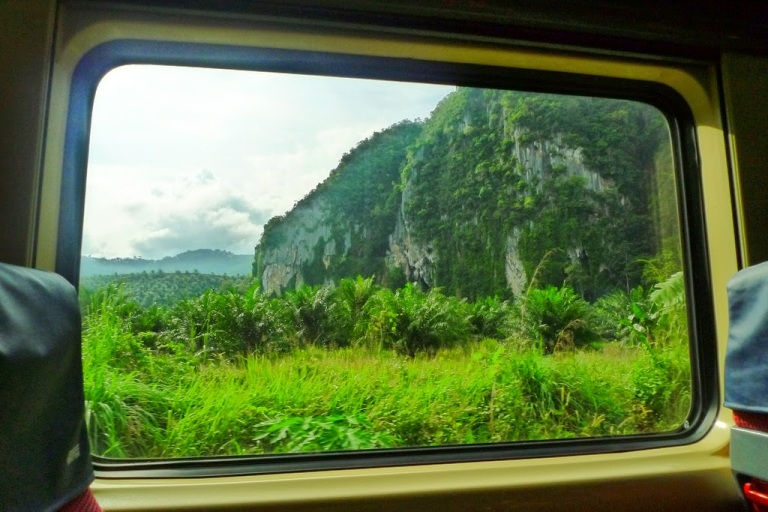 The view during the ride on the Jungle Railway in Eastern Malaysia