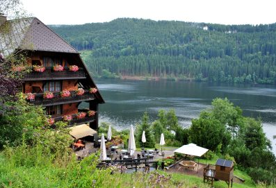 The Black Forest at Schwarzwald is full of lakes and trees