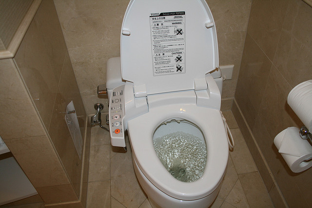 An idiot s guide to using a japanese toilet backpackerlee for Commode japonaise