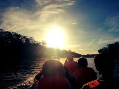 A river safari on the Kinabatangan