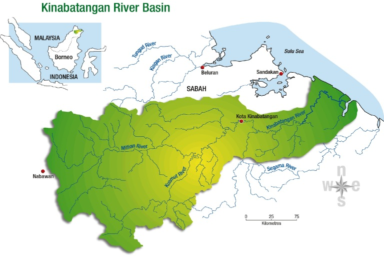 Map of the Kinabatangan River Basin (courtesy: WWF)