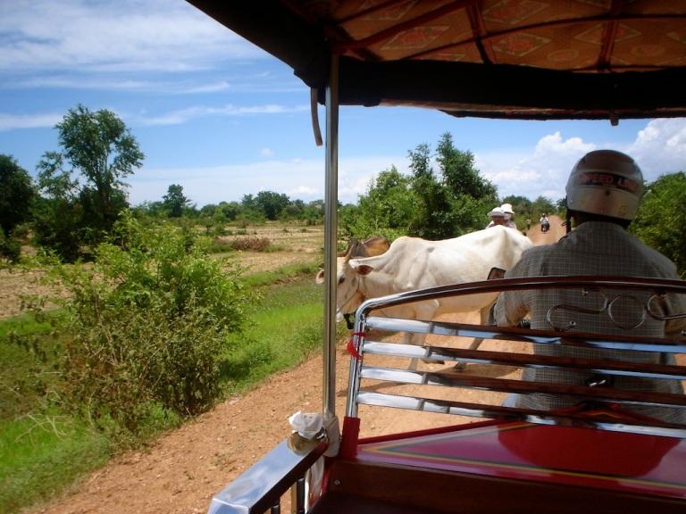 battambang1