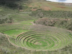 Moray looks like an alien crop circle