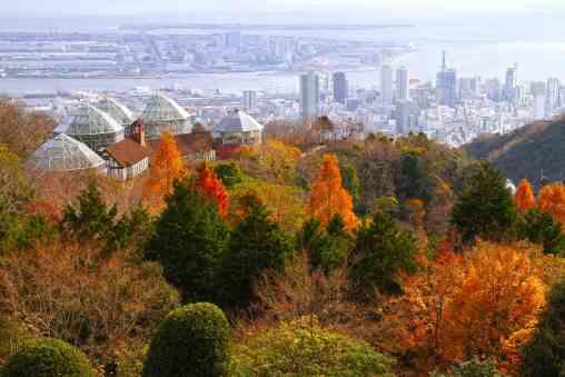 Autumn colours in Kobe