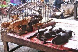 Pasar Ekstrim in Manado