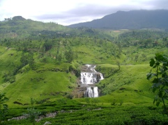Nuwara Eliya is stunning