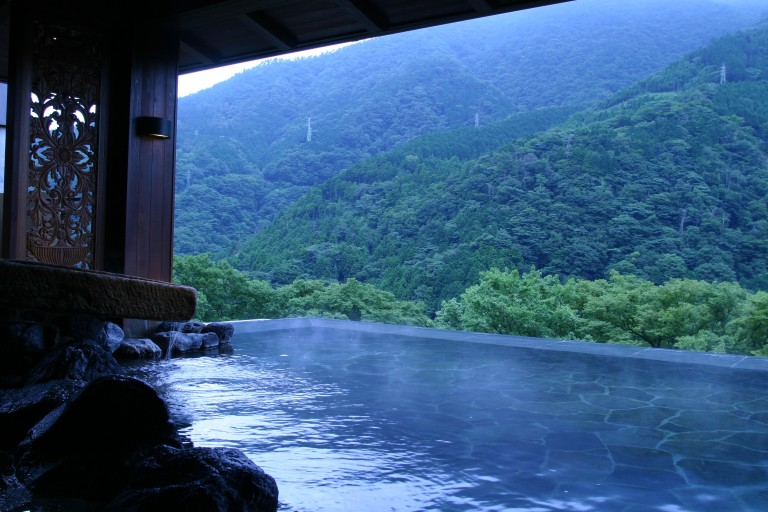 Hot springs and nature at Hakone
