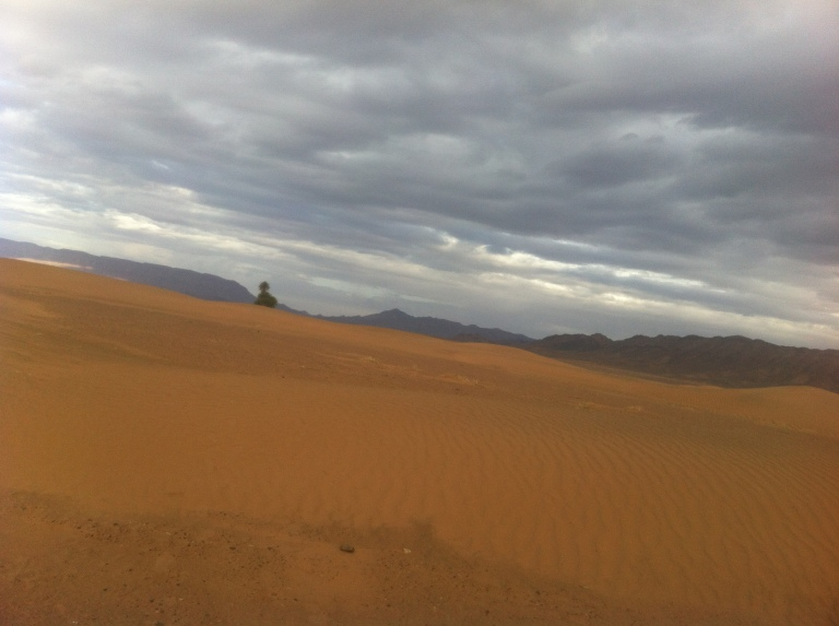 The vast and legendary desert can be a lonely place