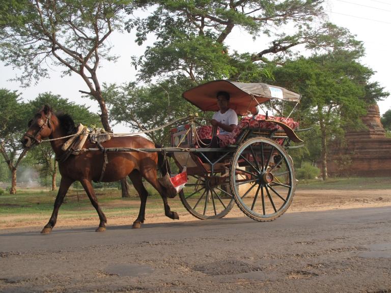 baganhorse