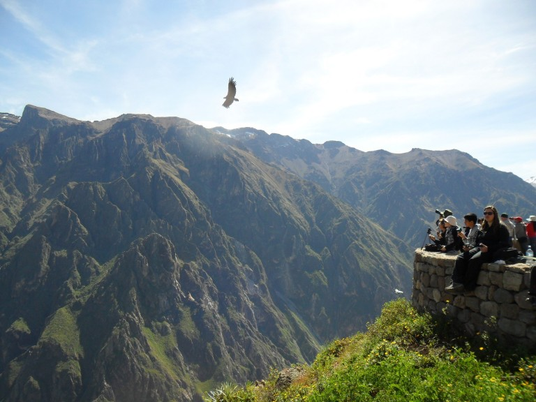 The epic Colca Canyon