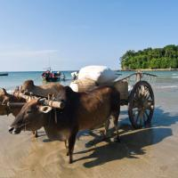 How to get to Ngapali Beach without flying