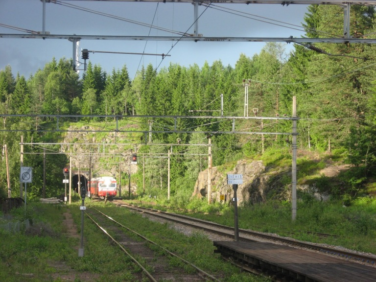 Local trains heading for the rural setting of Notodden